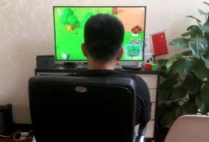 china's-animal-crossing-gamers-use-code-words,-middlemen-to-enter-virtual-world
