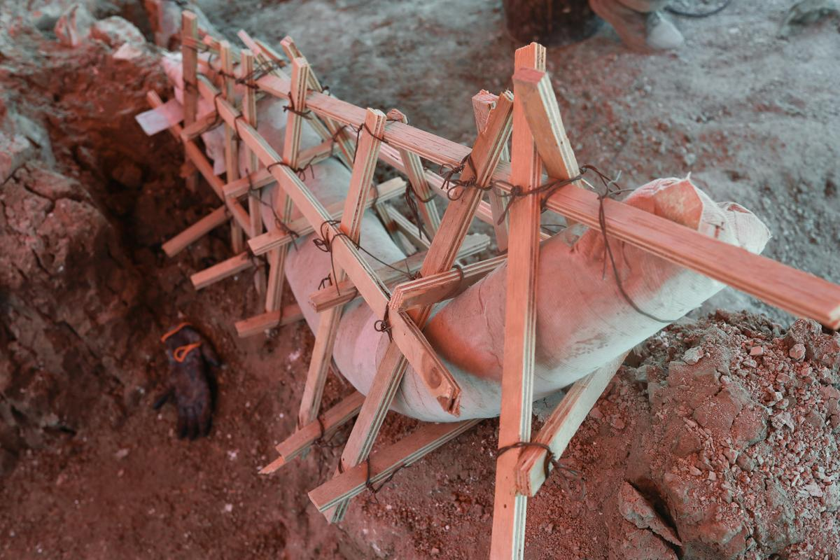 mammoth-skeletons-dug-up-at-mexico-city-airport-construction-site