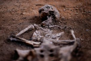 spanish-dig-unearths-human-remains-in-hunt-for-irish-rebel-lord
