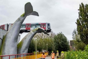 crashed-subway-train-saved-by-a-giant-whale-tail-sculpture