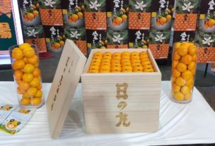 crate-of-oranges-sells-for-$9,600-in-japan
