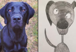 this-dad's-adorably-amateurish-pet-portraits-have-raised-thousands-for-charity