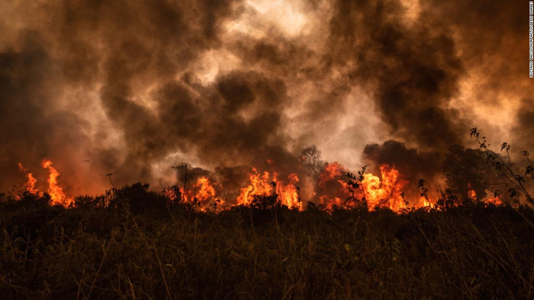 the-world's-largest-wetlands-are-on-fire.-that's-a-disaster-for-all-of-us