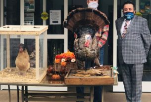 turkey-escapes-before-getting-pardoned