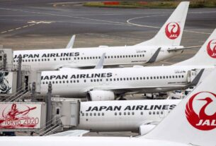 japanese-airline-suggests-passengers-skip-meals-to-reduce-food-waste