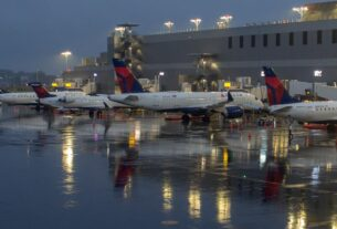 2-delta-passengers-open-the-door-of-a-moving-plane-and-slide-out-(with-a-dog)-at-laguardia-airport