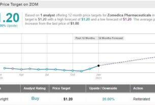 zomedica-stock-is-up-330%-in-one-month;-is-there-room-for-more-upside?