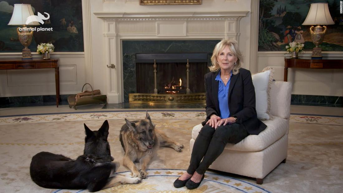 puppy-bowl-xvii-to-feature-first-lady-jill-biden-message