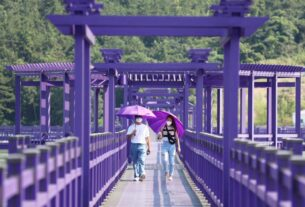south-korea's-all-purple-banwol-island-is-a-photographer's-dream