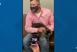 cat-found-in-arkansas-reunited-w/-owners-in-texas