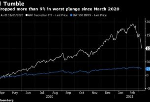 cathie-wood's-ark-etfs-are-slumping-as-speculative-stocks-suffer