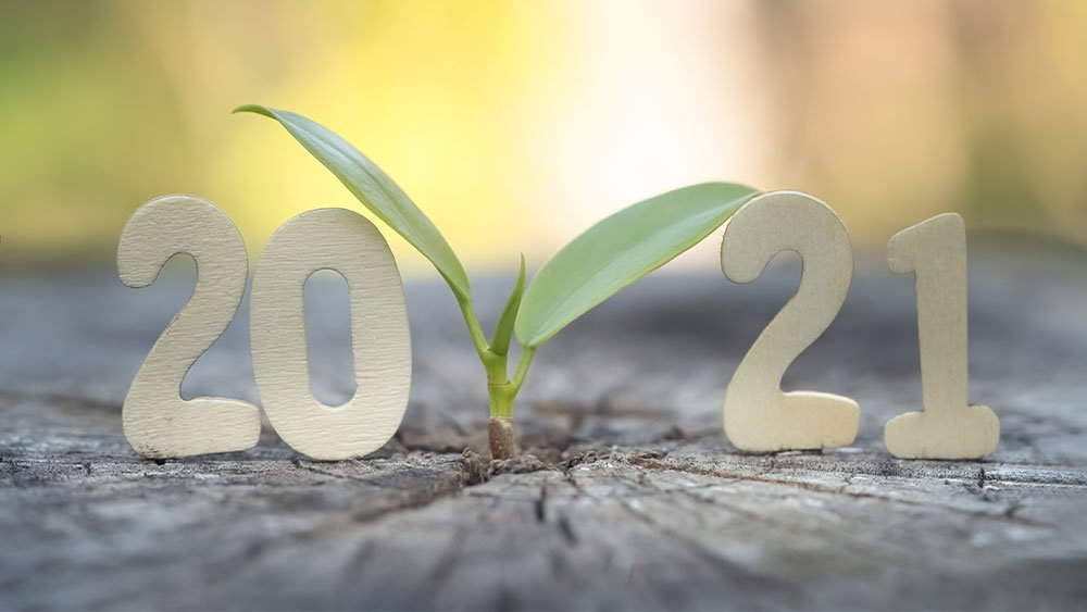 fastest-growing-ipo-stocks:-five-ipos-expecting-up-to-425%-growth-in-2021