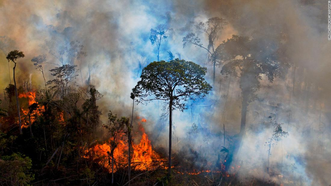 brazil-says-it's-ready-to-end-deforestation-in-amazon.-but-there's-a-price-tag