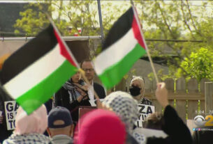 pro-palestinian-protesters-demand-end-to-airstrikes