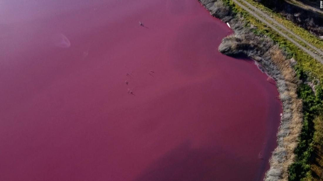 see-disaster-stricken-lagoon-turned-pink