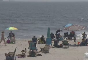 sharks-spotted-at-rockaway,-lido-beaches
