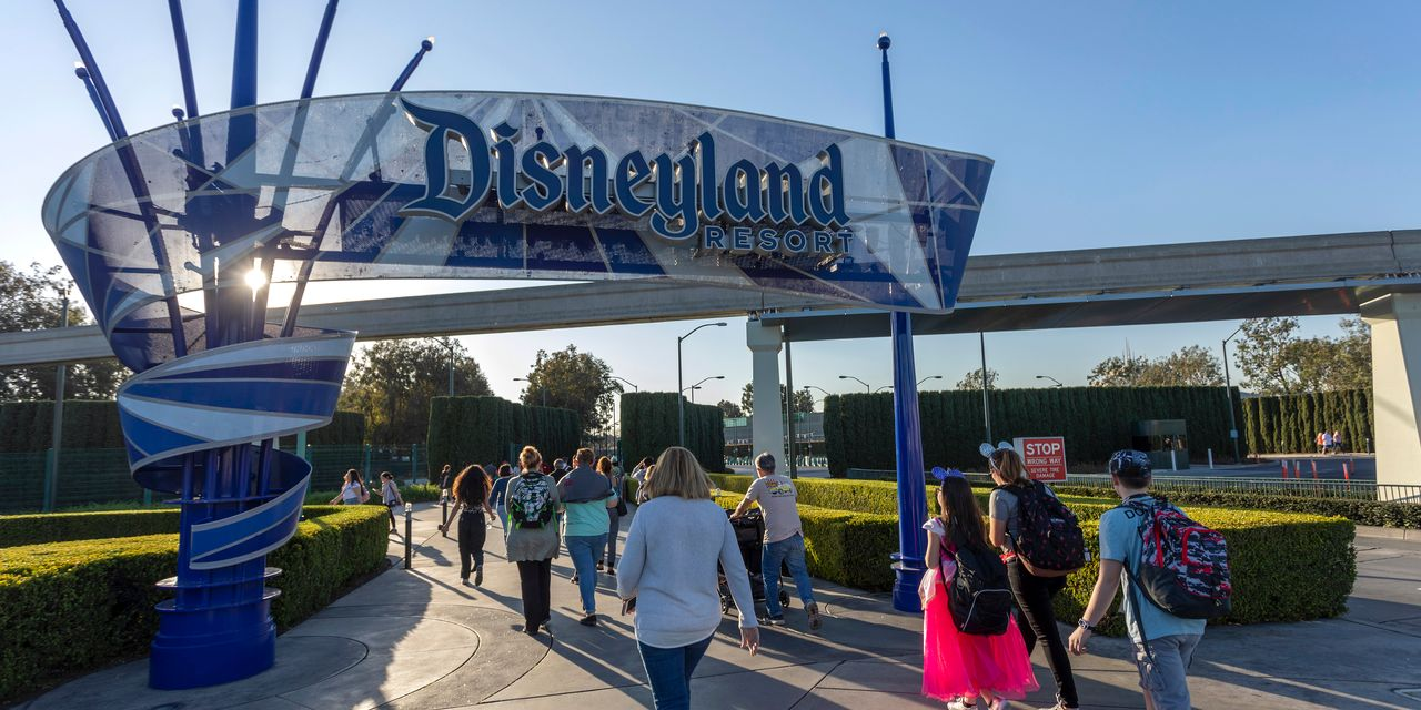 """disney-stock-is-falling-after-the-ceo-warned-of-slower-growth-for-disney+-a-reinstated-dividend-is-""""in-the-distant-future."""""""