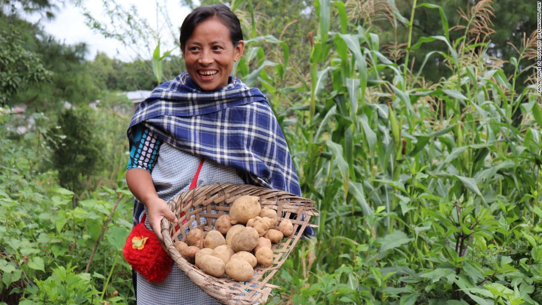 can-the-world-learn-from-indigenous-peoples'-food-systems,-before-they-are-lost?